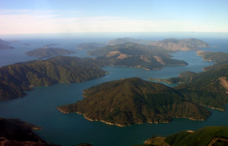 Tory_Channel_Marlborough_Sounds.jpg