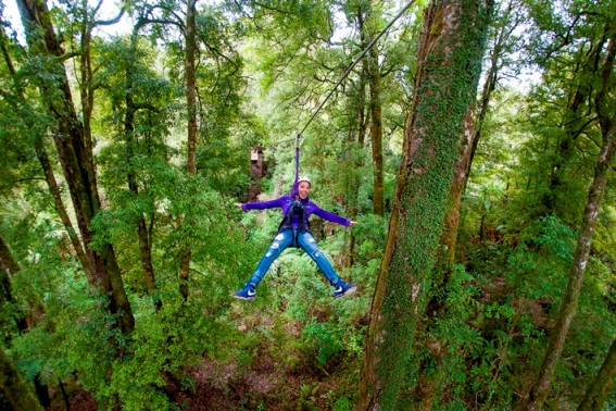 Image 2 Canopy Tours Low Res.jpg