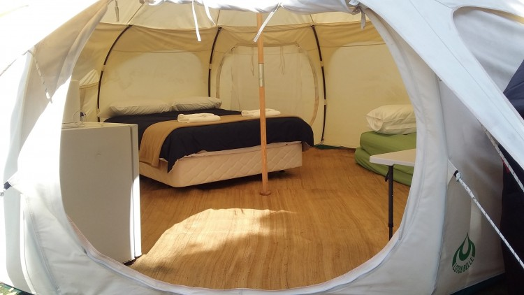 Glamping, an Auckland Council first (1)