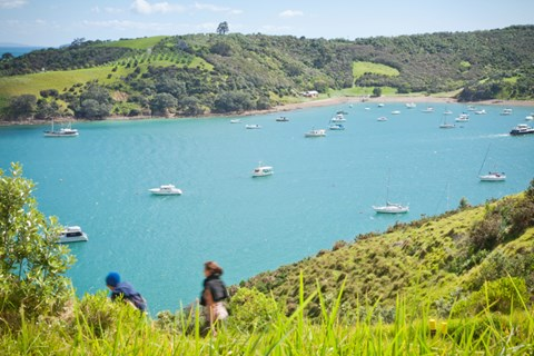 Take a hike on these Auckland tracks (2)