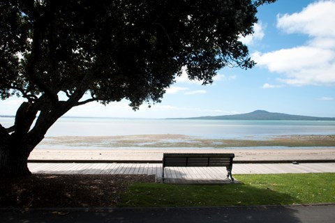 Take a hike on these Auckland tracks (4)