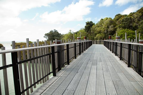 Auckland walks to do this winter (3)
