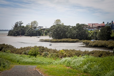 Auckland walks to do this winter (4)