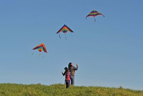 Manu Aute Kites (1)