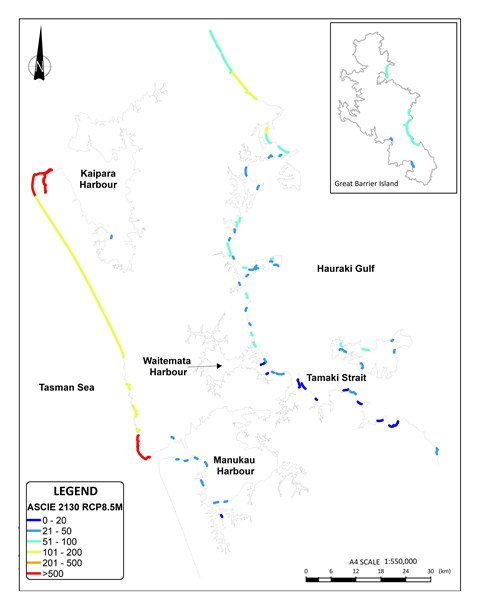 Prediction and planning – coastal erosion in Tāmaki Makaurau