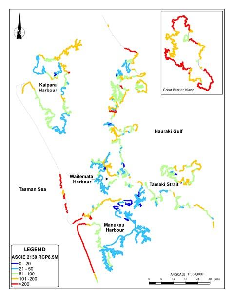 Prediction and planning – coastal erosion in Tāmaki Makaurau (1)