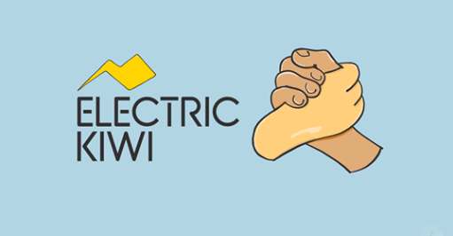 ELECTRICKIWI.CO.NZ