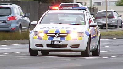 지나가던 차량 총기로 위협해 강탈한 30대 남성