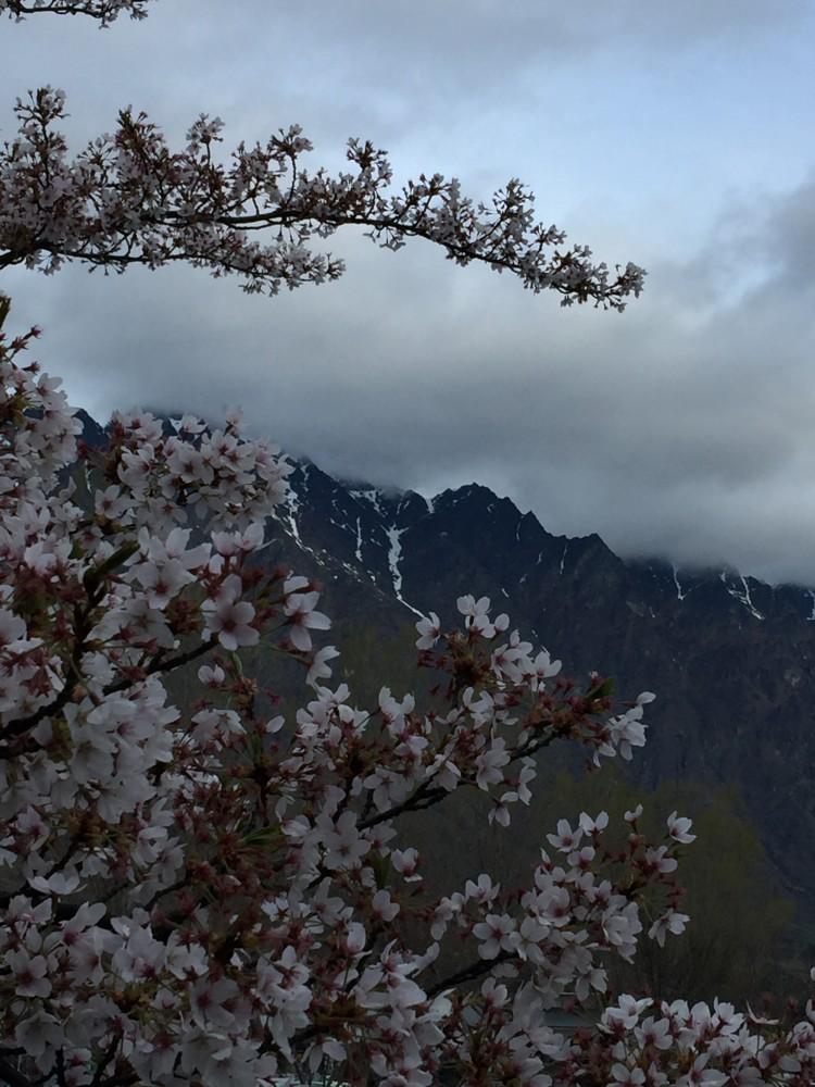 리마커블 산 아래 봄 풍경 ..